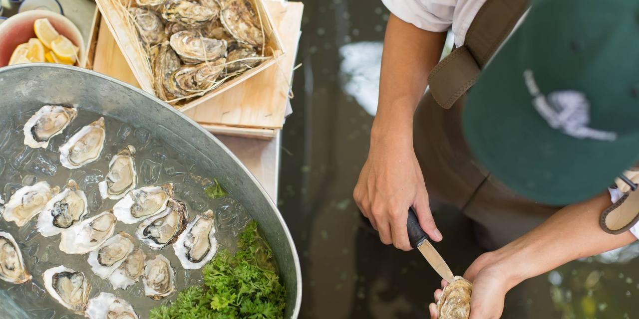 """""""ซันดาวเนอร์ส แอนด์ ออยสเตอร์"""" (Sundowners and Oysters)  เปลี่ยนคืนวันศุกร์ให้เป็นค่ำคืนแห่งการสังสรรค์ ที่โฟร์ซีซั่นส์ รีสอร์ท เชียงใหม่"""