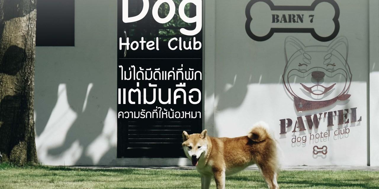 Pawtel Dog Hotel Club : ไม่ได้มีดีแค่ที่พัก แต่มันคือความรักที่ให้น้องหมา