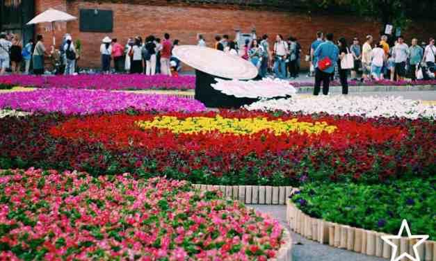 แอ่วต่อบ่รอละเน้อ เทศกาลไม้ดอกไม้ประดับประจำจังหวัดเชียงใหม่ 2562