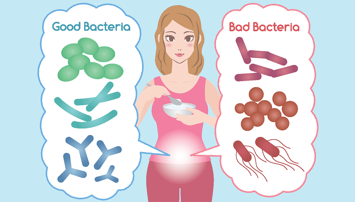 Gut Bacteriria  Play's A Role In  Weight Loss!
