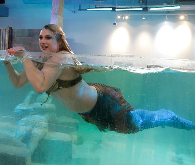 Costumed Mermaid Heather Guy Shares The Caribbean Cove Tank With Stingrays At The New Seaquest Interactive