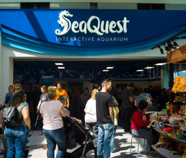 People Line Up To Get Into The Seaquest Interactive Aquarium At The Boulevard Mall In Las