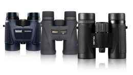 Best Bird Watching Binoculars Reviews