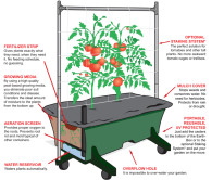 NEW-illustration-w-description-earthbox