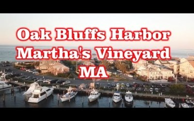 Oak Bluffs Harbor – Martha's Vineyard, MA – Drone