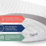 Perfect Cloud Ultraplush 10-Inch Memory Foam Mattress and GelBasics Memory Foam Pillow Bundle (RV Short Queen)