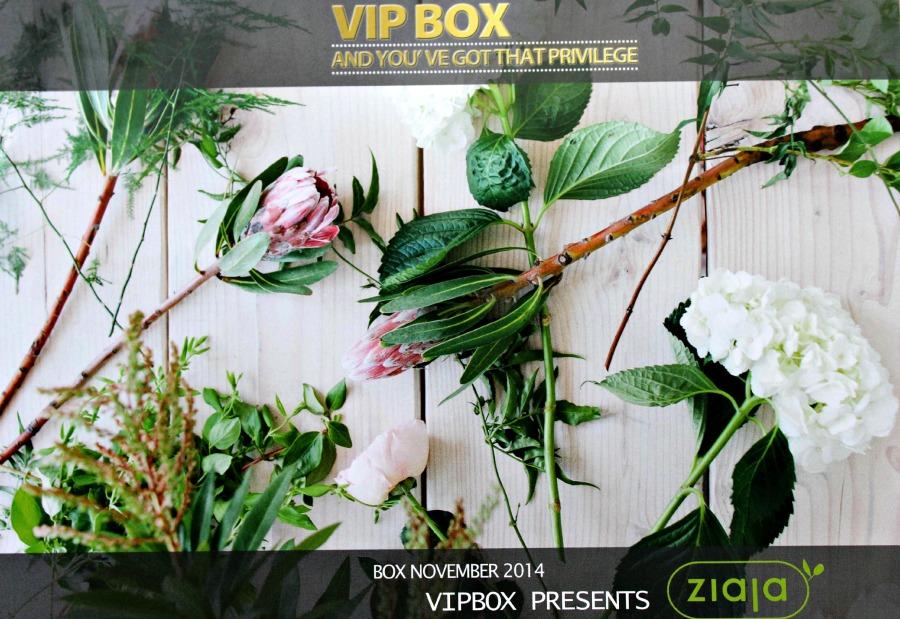 Vipbox november