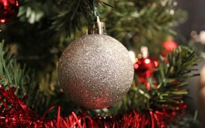 My Life | Onze eerste kerstboom