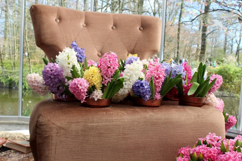 Keukenhof - Bloemen op stoel
