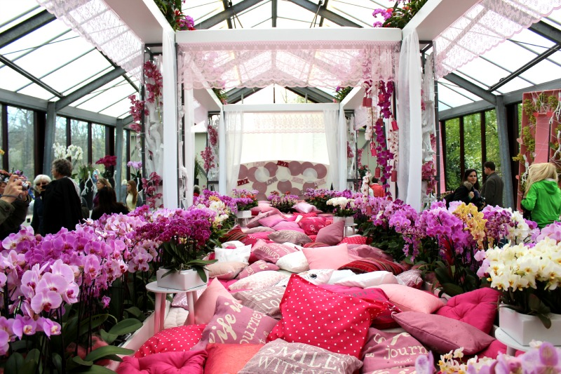 Keukenhof - Kingsize Orchidee bed