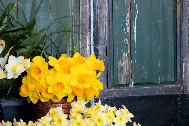 Keukenhof - Narcis arrangement