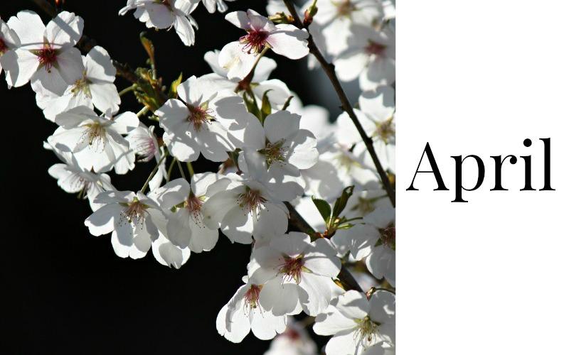 Mijn Maand | April