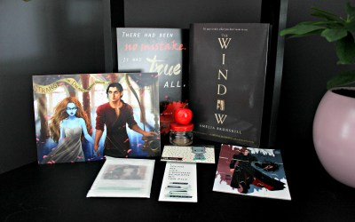 Unboxing   Celebrate Books – Lie to me