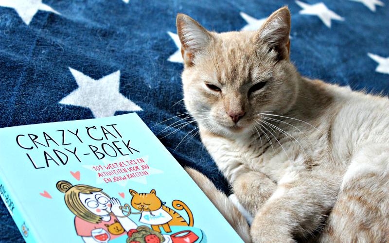Crazy Cat Lady-boek - Elke van Huffel