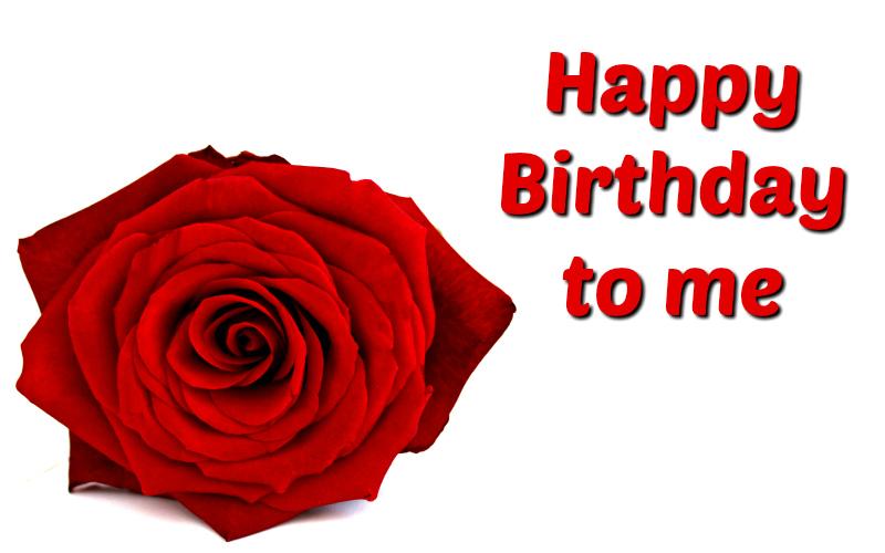 Happy Birthday, Happy Birthday!