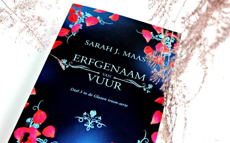 Erfgenaam van Vuur - Sarah J. Maas