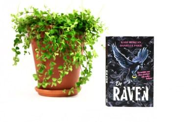Boekrecensie | De Raven – Kass Morgan en Daniëlle Page