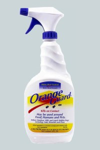 Best Insect Spray
