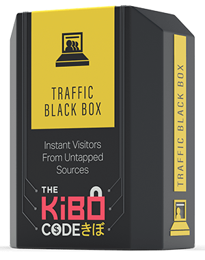 The Traffic Black Box
