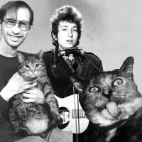 Bob Dylan and more Cats