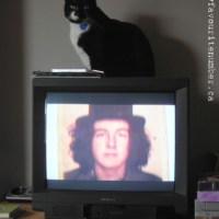 Joe Strummer With a Cat