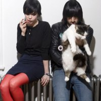 Crystal Castles With A Cat
