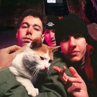 The Beastie Boys With A Cat
