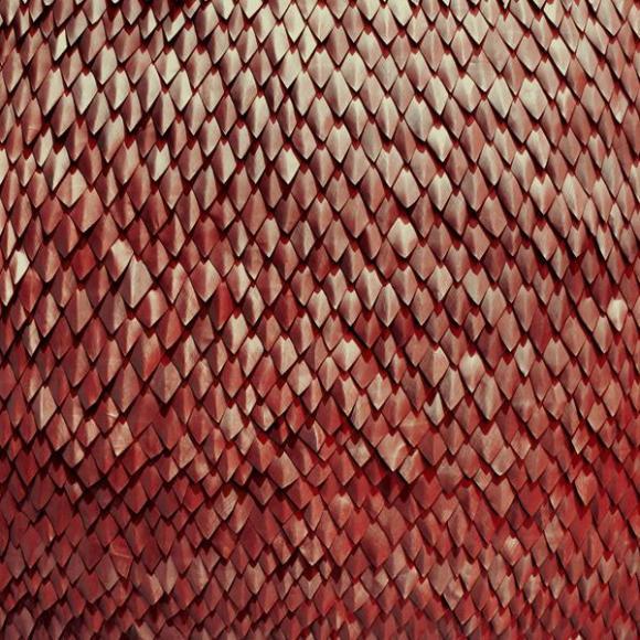 Kill-The-Vultures-Carnelian-cover-art
