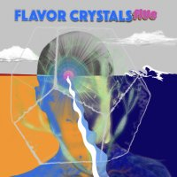 Flavor Crystals Explore Every Corner of Pysch Rock on Their Latest LP five