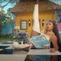 Music Legends With Cats: Megan Thee Stallion