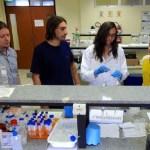 Nanopartículas provocam 'suicídio' de células cancerosas