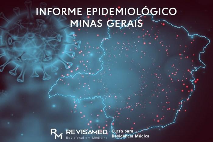 informe epidemiológico minas gerais