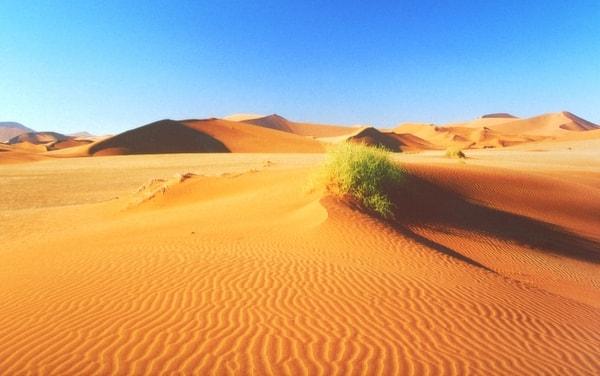Kalahari Desert. Image credit HDImageLib