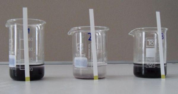 amylase enzyme lab