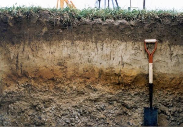Soil profile. Image credit nesoil.com