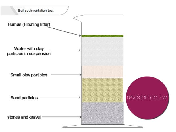 Soil sedimentation test.