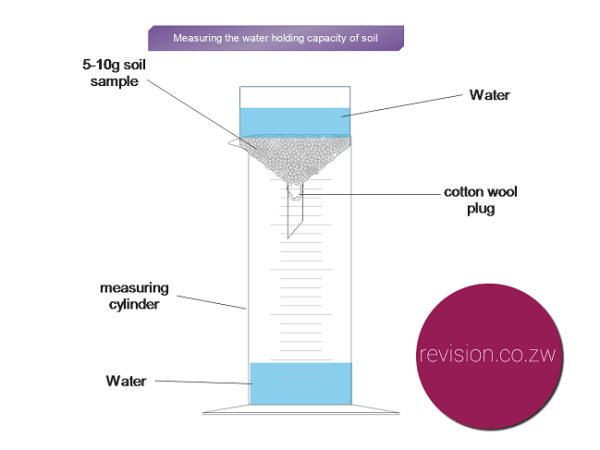 Experiment Comparing The Water Holding Capacity Of The Soil Free