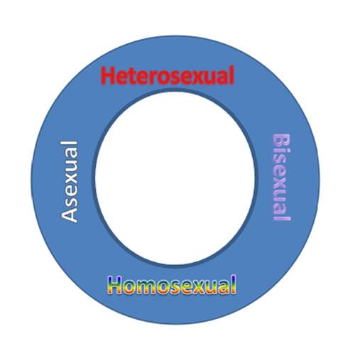 Resultado de imagen para . La orientación sexual en humanos se debe de ver como un continuo, donde por un lado podemos encontrar individuos exclusivamente heterosexuales, personas con igual preferencia por ambos sexos (bisexual), sujetos únicamente homosexuales e individuos asexuales.