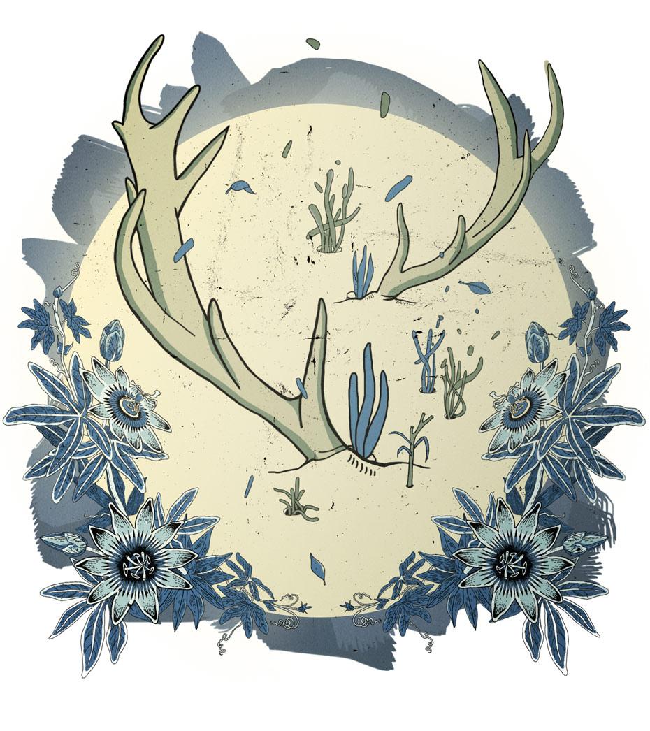 Los-ciervos_03_col