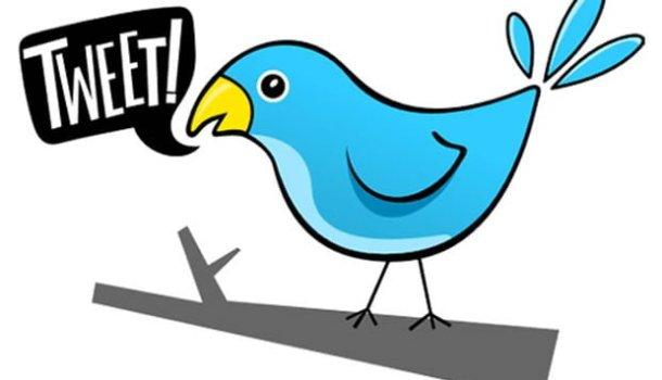 99 mulheres essenciais do Twitter brasileiro em 2013