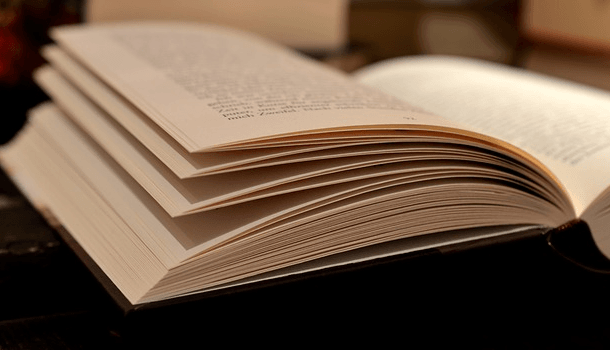 As 40 palavras mais belas da língua portuguesa