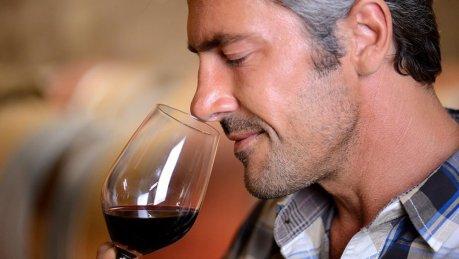 Os 10 melhores vinhos brasileiros