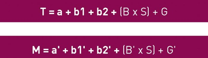 CESVIMAP_Pintura_La fórmula general del Baremo es