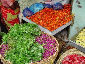 flores-de-arco