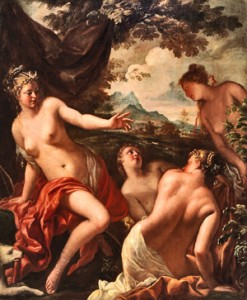 Federico Cervelli, Diana y Calixto, Museo Cerralbo