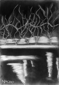 Simbiosis, exposición en el Instituto Francés de Madrid