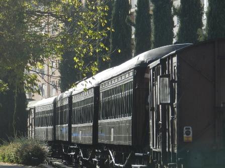 Tren de la Fresa (3)