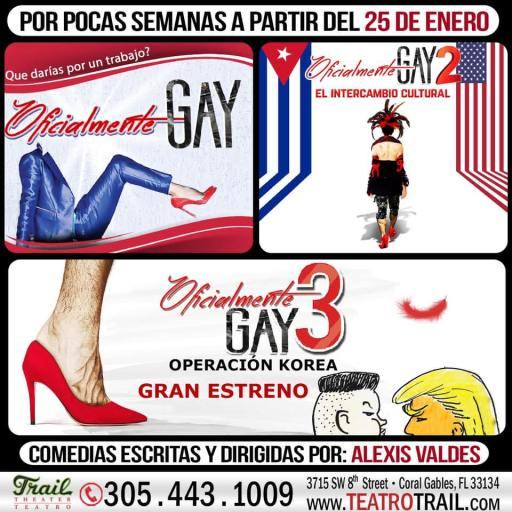 Cartel de Oficialmente Gay