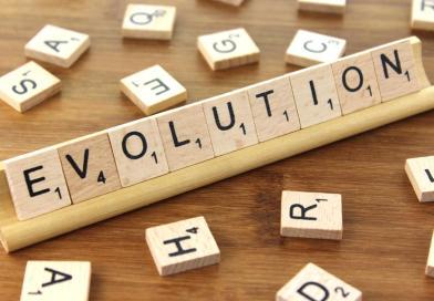 Evolução e ideologia