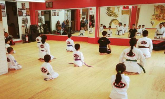 Curso Manejo de Niños en las Artes Marciales